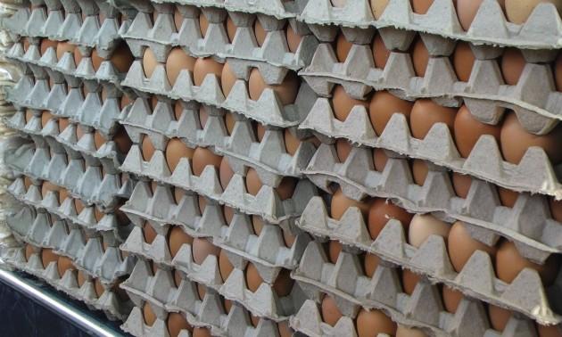 huevos_precios_web000000001-630x378