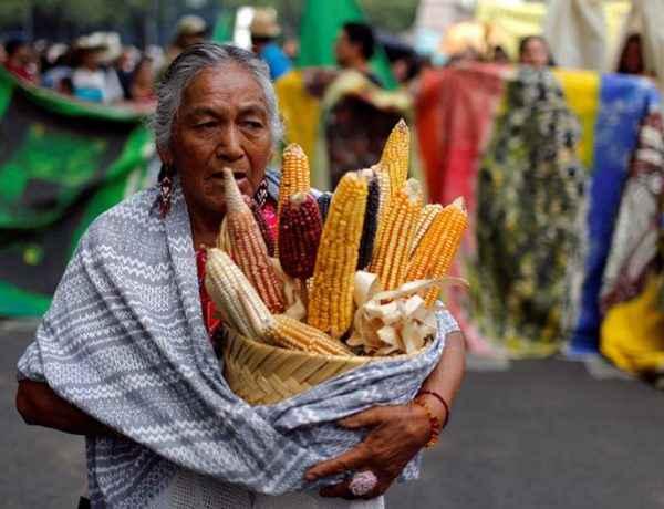 Protestas contra Monsanto en Ciudad de México el 21 de mayo de 2016. Reuters/T. Bravo