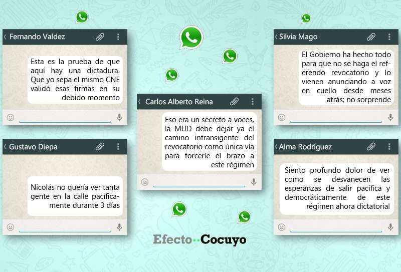 Cocuyo WhatsApp
