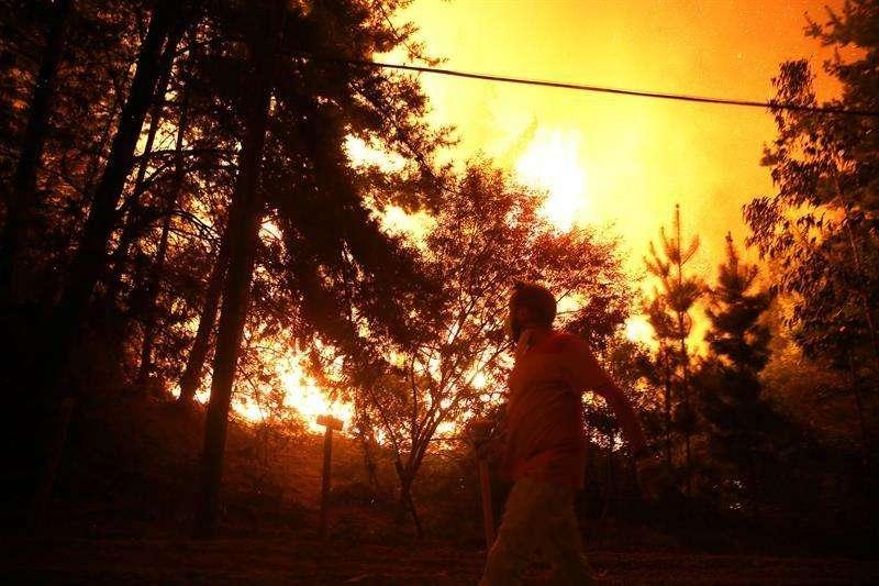 Onemi informó que todavía hay 77 incendios forestales en combate | Nacional