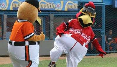 Las mascota de Aguilas del Zulia y cardenales del Lara animan al publico marabino