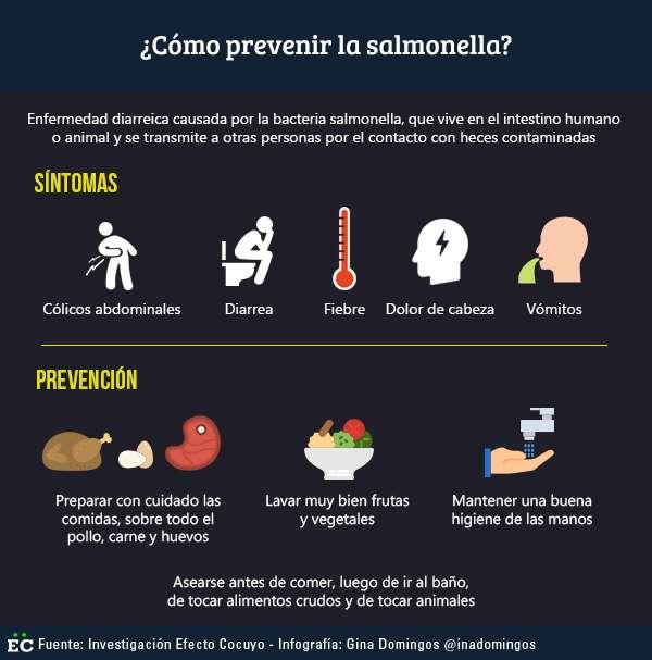 salmonella-1