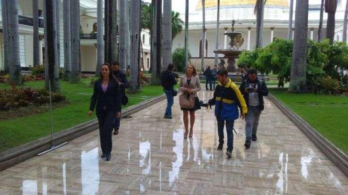 12 países rechazan la usurpación de las competencias de la Asamblea venezolana