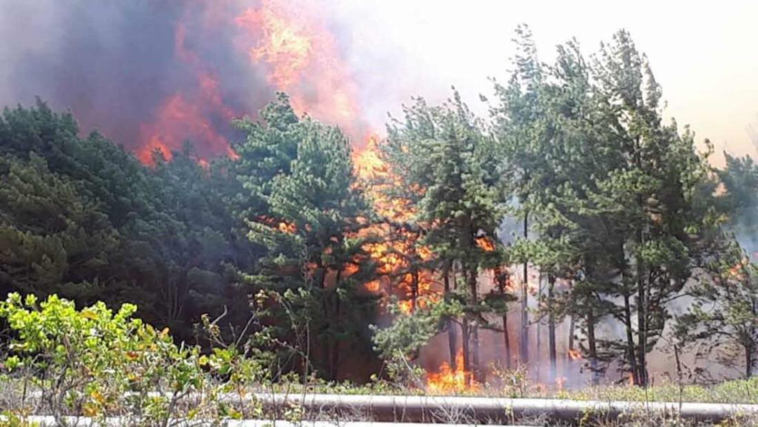 Incendio Uverito