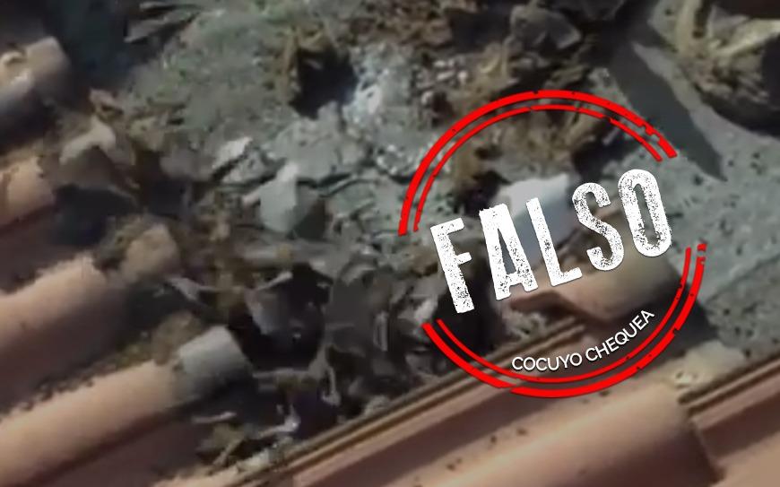 Video de un techo invadido por murciélagos no guarda relación con el coronavirus