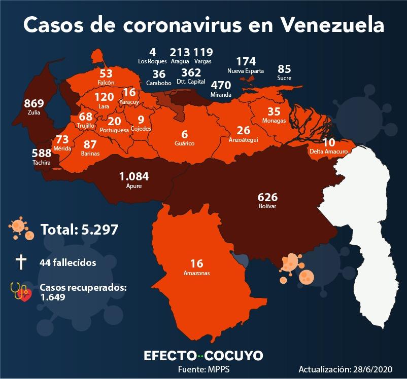 casos de coronavirus por estado