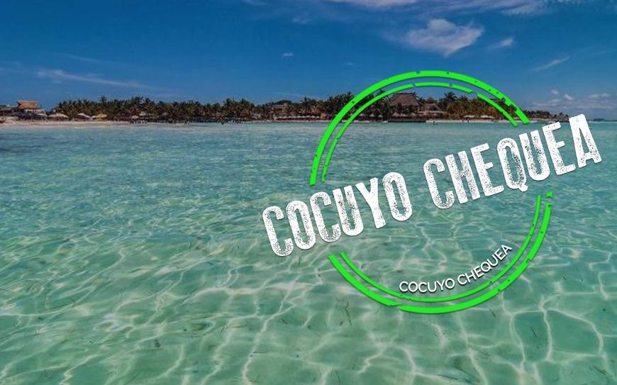 ¿El COVID-19 puede transmitirse en las playas o piscinas?