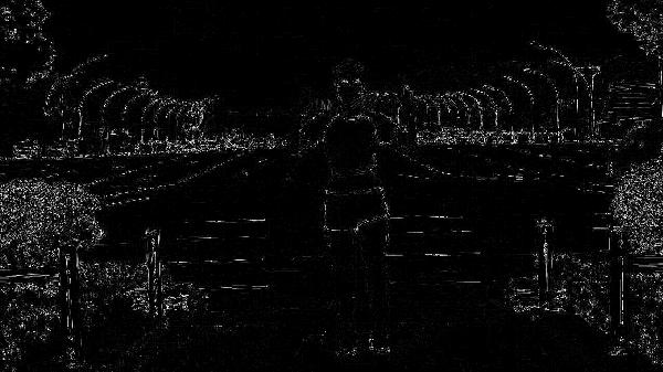 que no existe alteración visual por superposición de imagen en referencia de su sombra.