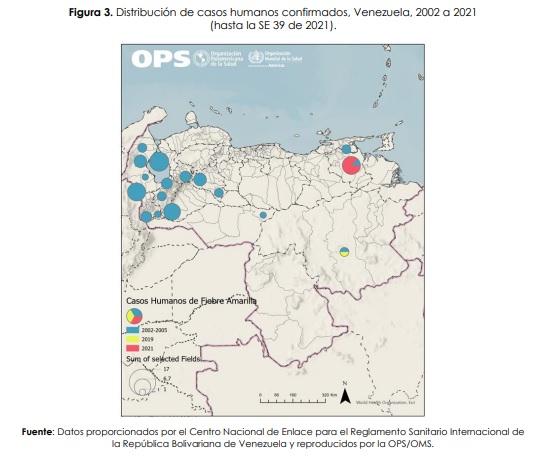 OPS confirma casos de fiebre amarilla en Venezuela